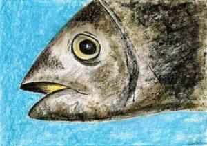 """Ausstellung """"Fischköppe"""" (Bild von Zeinab Alipour, Afghanistan)"""